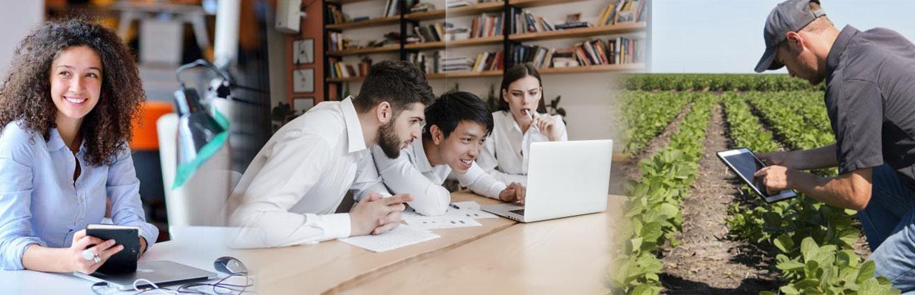 Aprenda herramientas para el fortalecimiento de su empresa u organización en tiempos de COVID 19